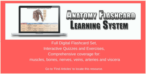 Anatomy Flashcard: Full Digital Flashcard set; Interactive Quizzes and Exercises; Comprehensive coverage for: muscles, bones, nerves, veins, arteries, and viscera. Go to 'Find Articles' to locate this resource.